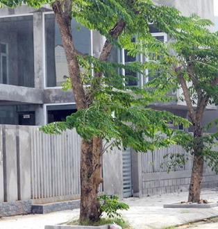 giang-huong-1